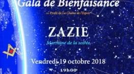 gala de bienfaisance 2018   solidarite opera
